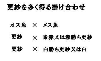 【仮想通貨】【悲報】ビットコインの保有率見てみたら6割弱日本人が保有しているらしいwwwなんとなく不安なんだがw | 仮想通貨速報まとめ隊